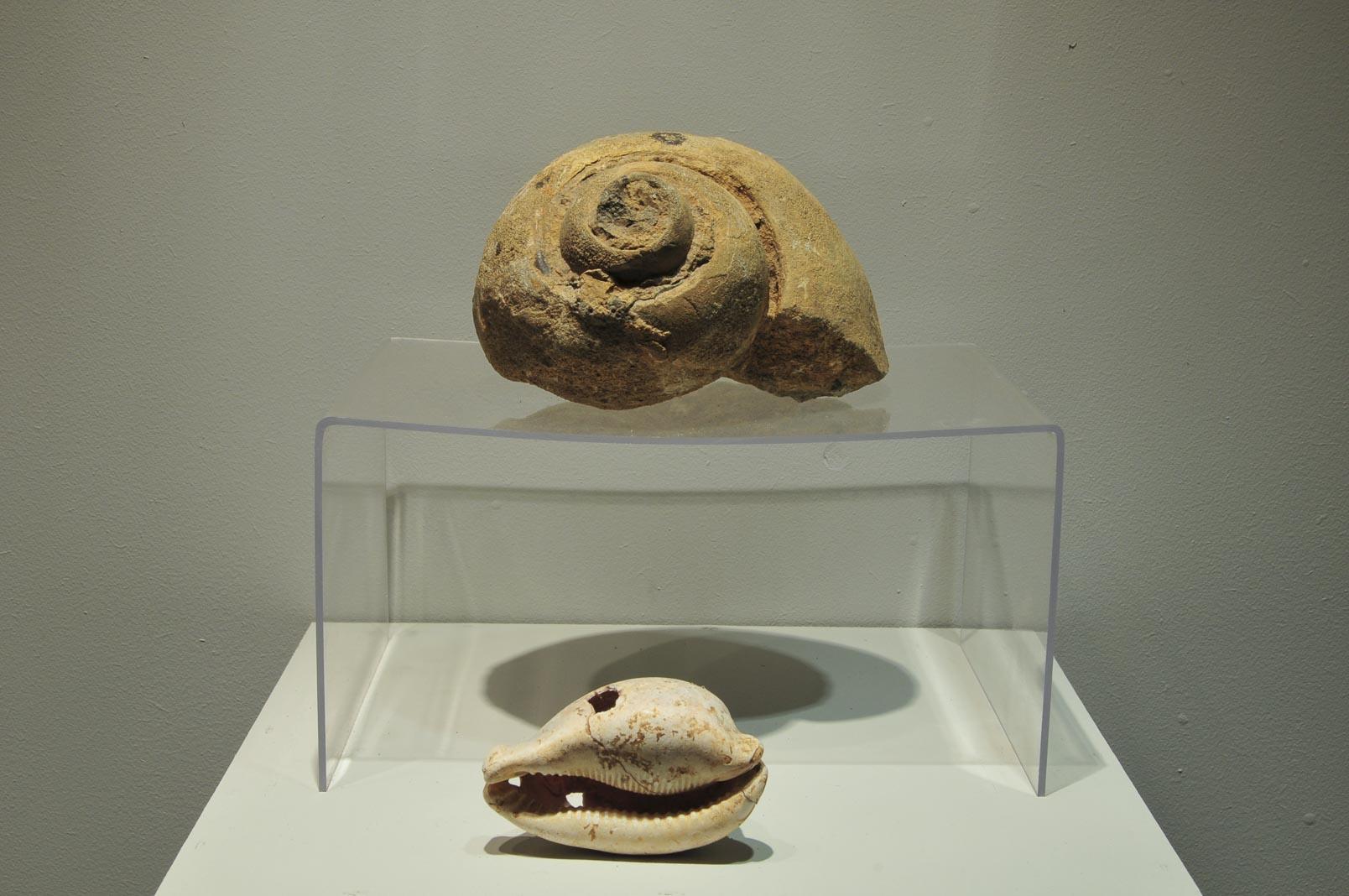 troyan-museum-arheologichesko-nasledstvo-6